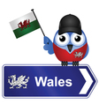 COUNTRY SIGN WALES vector image
