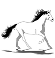 White Horse-Stallion vector image