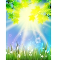 Beautiful nature eco background vector image