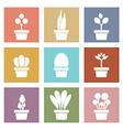 Set Of White Pot Plants Symbol vector image