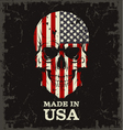 Skull color of the flag vector image
