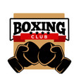 five-star boxing club logotype with sport gloves vector image