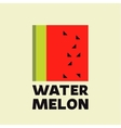 Watermelon Abstract logo icon sign flat vector image