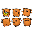brown bear set vector image