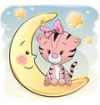 cute cartoon tiger on the moon vector image