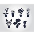 Flat style Houseplants vector image