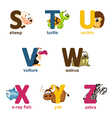 alphabet animals from S to Z vector image