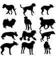 Set silhouette black dog vector image vector image