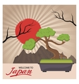 Sun and bonsai tree of Japan design vector image