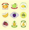 fruits badges vector image