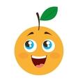 orange citrus fruit character vector image