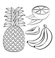 fresh and healthy fruits vector image