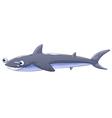 A gray shark vector image