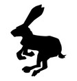hare symbol of cowardice vector image vector image