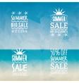 summer sale labels vector image