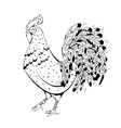 Graphics handmade drawing Rooster Vintage vector image