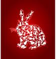 rabbit3 vector image vector image
