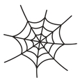 Spider web on white background vector image