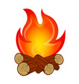 fire on fire wood vector image