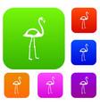 flamingo set color collection vector image