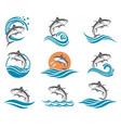 tuna fish set vector image