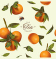 Orange tea pattern vector image