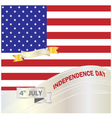 American Independence Day3 vector image