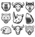 vintage wild animals set vector image