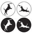 dog-frisbee vector image vector image