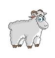 Cartoon farm sheep character vector image