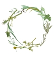 wreath made with wild herbs vector image vector image