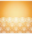 floral seamless lace pattern on yellow background vector image