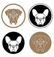 Set of round labels with dog heads vector image