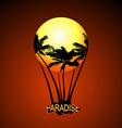 Paradise Balloon vector image