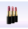 glossy lipsticks vector image vector image