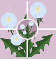 Dandelion abstract background vector image