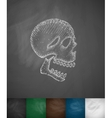 X-rays of the skull icon vector image