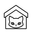 Cat breed animal mammal house pet outline vector image