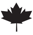 maple leaf icon on white background maple leaf vector image