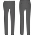 gray elegant pants vector image