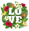 tropic and exotic beautiful plants and flowers vector image