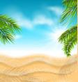 tropical beach with sand sea palm leaves sun vector image