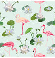 Flamingo Bird and Waterlily Flowers Background vector image