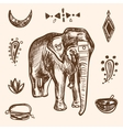 Indian Hand Drawn Hamsa with Elephant Arabi vector image