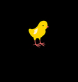 icon beautiful yellow chick vector image