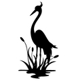 beauty heron silhouette vector image