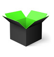 Opened box vector image vector image