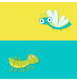 Grasshopper and dragonfly Cute cartoon character vector image