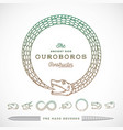 Abstract Infinite Ouroboros Snake Symbol vector image