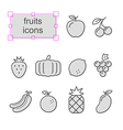 Thin line icons set Fruits vector image
